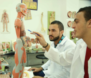 Students using the anatomy models