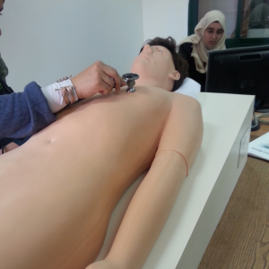 Students using Harvey (medical equipment)